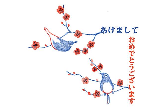 ryuku_01